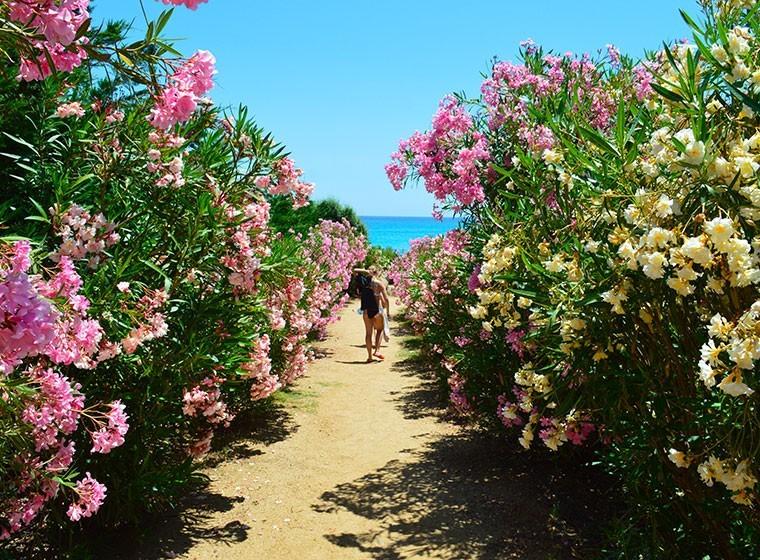 spiaggia-villasimius-redidence01