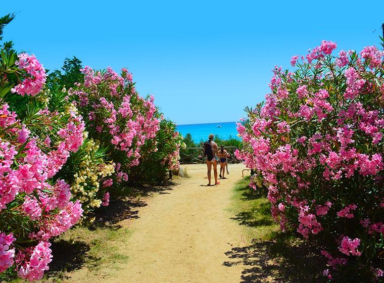 spiaggia-villasimius-redidence02